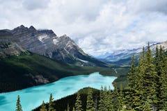 den alberta banff Kanada laken lokaliserade nationalparkpeyto Royaltyfri Foto