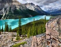 den alberta banff Kanada laken lokaliserade nationalparkpeyto Fotografering för Bildbyråer