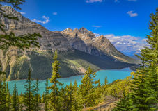 den alberta banff Kanada laken lokaliserade nationalparkpeyto Royaltyfria Bilder