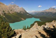 den alberta banff Kanada laken lokaliserade nationalparkpeyto Kanadensiskt stenigt berg Royaltyfri Bild
