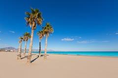Den Alicante San Juan stranden med gömma i handflatan träd royaltyfri bild