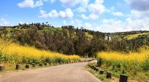 Den Aliso Viejo vildmarken parkerar sikt Arkivfoto