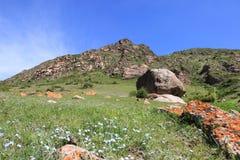 Den alpina dalen nära den Karakol staden, Kirgizistan Royaltyfri Fotografi