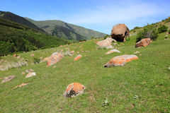 Den alpina dalen nära den Karakol staden, Kirgizistan arkivbild