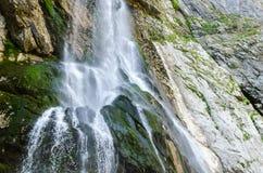 Den alpina vattenfallet royaltyfria bilder