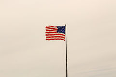Den Amerika flaggan Royaltyfria Bilder
