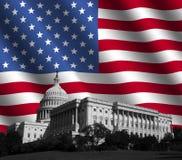 den amerikanska capitolen flag oss royaltyfri illustrationer