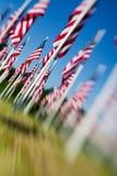 den amerikanska dagen flags minnesmärken USA Royaltyfria Bilder