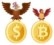 Den amerikanska skalliga örnen sitter på dollarsymbolet och sparven Royaltyfri Foto