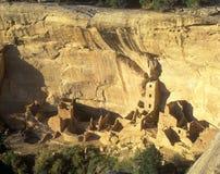 Den Anasazi indiern fördärvar, Mesa Verde National Park, Colorado Arkivfoton