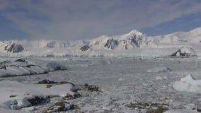 Den antarktiska halvön och havet längs det täckte med is och snö arkivfilmer