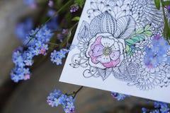 Den AntiStress vuxna färgläggningboken med naturlig förgätmigej blommar royaltyfria foton