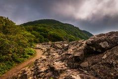 Den Appalachian slingan, på små steniga manklippor i den Shenandoah nationalparken Royaltyfri Bild