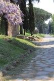 Den Appian vägen i Rome Royaltyfri Fotografi