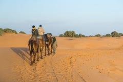 Den arabiska handboken med par av turisten i den Sahara öknen Royaltyfria Bilder