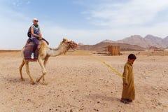 Den arabiska pojken rullar turister på en kamel Arkivfoto