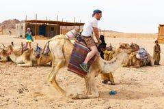 Den arabiska pojken rullar turister på en kamel Royaltyfri Bild