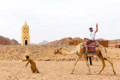 Den arabiska pojken rullar turister på en kamel Royaltyfri Foto