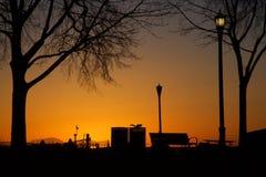 Den arbetsamma ekorren startar hans upptagna dag på gryning i en Serene Orange Lakeside Park Silhouette Royaltyfri Foto