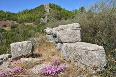 Den Arcadian väggen, Messinia, Grekland arkivfoto