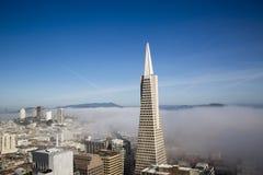 Den Areal sikten på den Transamerica pyramiden och stad av San Francisco täckte vid tät dimma Royaltyfri Fotografi