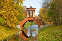 Den arga bron i det Oktober landskapet Tsarskoye Selo, St Petersburg Royaltyfri Foto