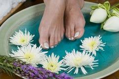 den aromatherapy foten blommar lotusblommabrunnsorten Royaltyfri Bild