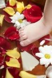 den aromatherapy petalen för badfotblommor steg Royaltyfri Foto