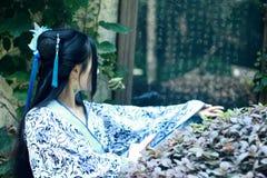 Den asiatiska kinesiska kvinnan i traditionella blått och vit Hanfu klär, spelar i en berömd trädgårds- near vägg Arkivbild