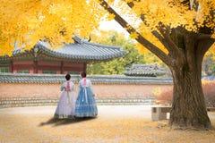 Den asiatiska koreanska kvinnan klädde Hanbok i traditionell klänning som går I arkivfoto