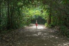 Den asiatiska kvinnan i rött anseende i träd gräver i skog Arkivbild
