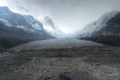 Den Athabasca glaciären i de kanadensiska steniga bergen Royaltyfria Foton