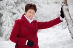 Den attraktiva äldre kvinnan i en snöig vinter parkerar Arkivbilder