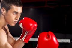 Den attraktiva boxningmästaren utbildar med försök Arkivfoto