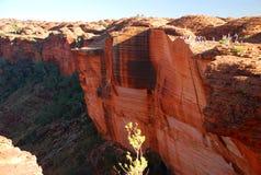 den Australien kanjonen görar till kung nationalparkwatarrka Watarrka nationalpark, nordligt territorium, Australien Royaltyfri Bild