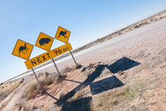 Den australiensiska djurlivkorsningen undertecknar Arkivfoto