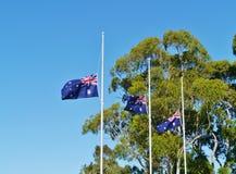 Den australiska nationsflaggahalva stången royaltyfria bilder