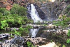 Den australiska vattenfallet Bloomfield faller, norr Queensland som är austral Arkivbild