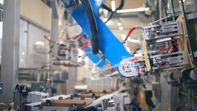 Den automatiserade apparaten fungerar med papp som g?r askar p? en transport?r stock video