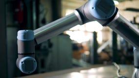 Den automatiska roboten är inflyttningen lagret stock video