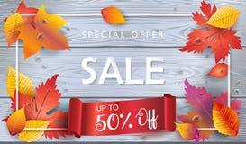 Den Autumn Sale kupongnedgången lämnar det moderiktiga wood banret Royaltyfria Bilder