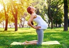 Den avkopplade gravida kvinnan som gör yoga på mattt parkerar in Royaltyfri Fotografi