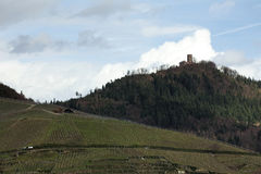 Den avlägsna sikten på slott fördärvar Yburg nära Baden-Baden, Baden-Wurttemberg, Tyskland, ovanför vingårdar Arkivbild