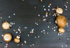 Den bästa sikten av nya champinjoner med pepparkornblandningen och saltar på mörker arkivfoton