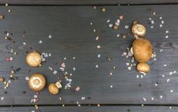 Den bästa sikten av nya champinjoner med pepparkornblandningen och saltar på mörker royaltyfri fotografi