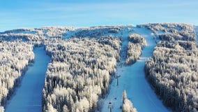 Den bästa sikten av skidar lutningar med elevatorer footage Härlig sikt av dentäckte berglutningen med barrskogen och att skida royaltyfri fotografi