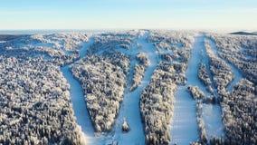 Den bästa sikten av skidar lutningar med elevatorer footage Härlig sikt av dentäckte berglutningen med barrskogen och att skida arkivbild