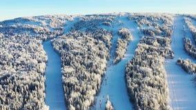 Den bästa sikten av skidar lutningar med elevatorer footage Härlig sikt av dentäckte berglutningen med barrskogen och att skida arkivfoto