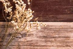 Den bästa sikten och värme signal vit bukettblomma som sätter på träa Royaltyfria Bilder