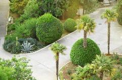 Den b?sta sikten av den h?rliga landskap jordningen med palmtr?d av det tropiskt parkerar i hotellet fotografering för bildbyråer